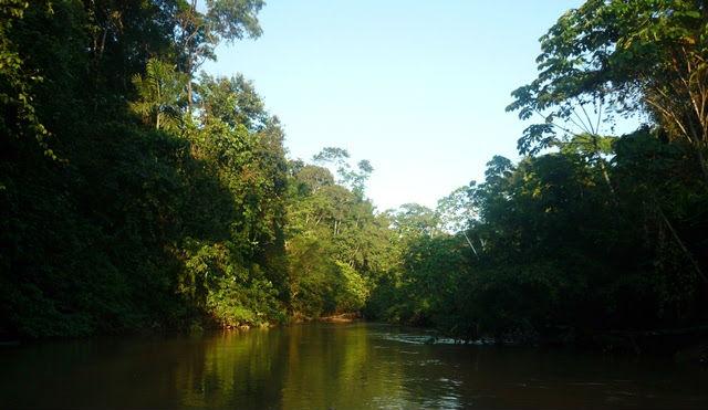Yasuni Biosphere Reserve -Shiripuno River