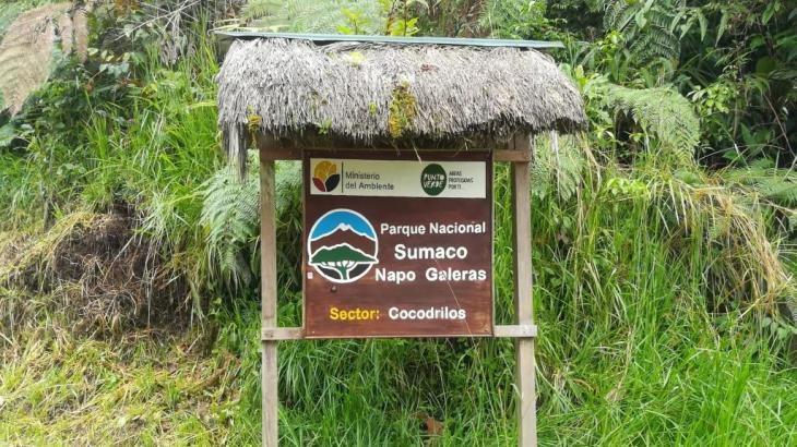 The Napo eBird Field Checklist Best Birdwatching Experience in Ecuador