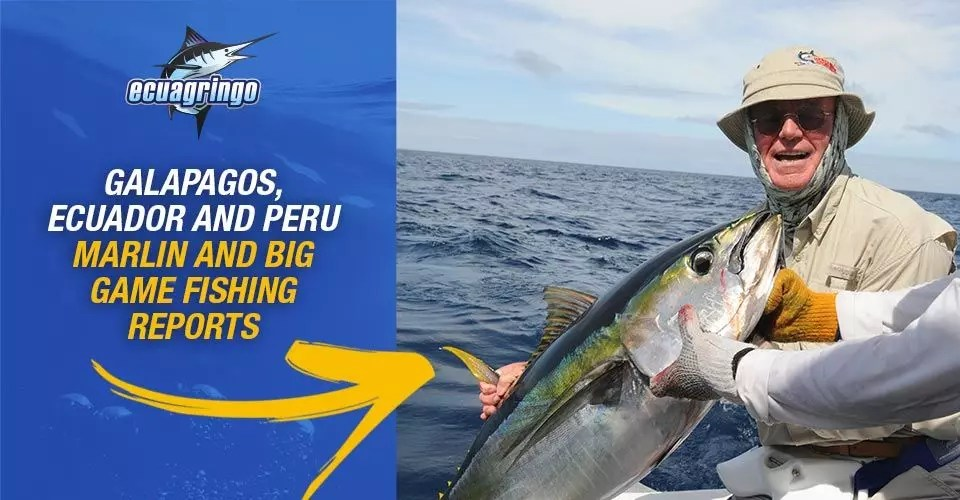 Galapagos, Ecuador and Peru Marlin and Big Game Fishing Reports