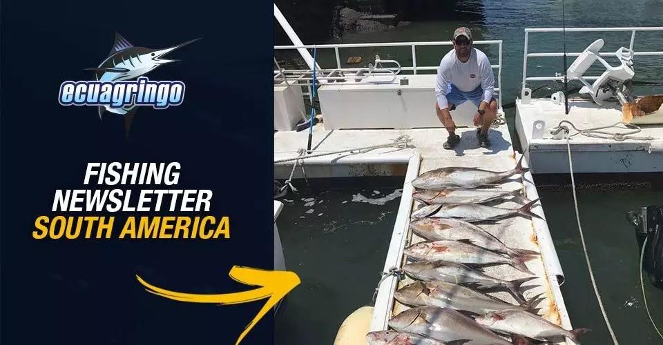 Ecuagringo Fishing Newsletter South America