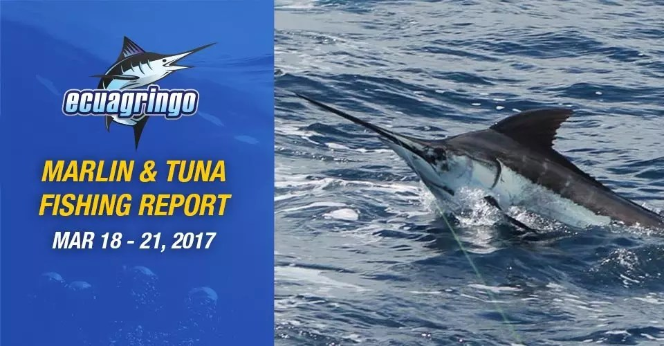 Marlin & Tuna Fishing Report For Ecuador, Galapagos & Peru, March 18-21 2017