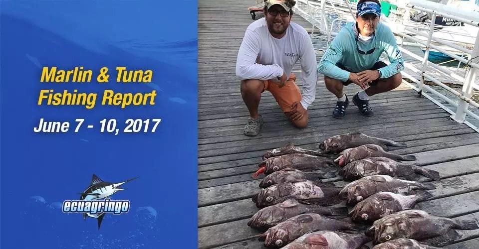 Marlin & Tuna Report, June 7-10, 2017