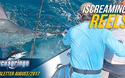 Marlin & Tuna Fishing August 2017 Newsletter