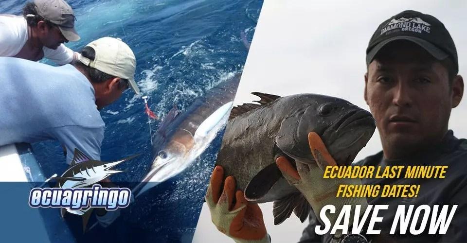 Ecuador Last Minute Fishing Dates! Save Now