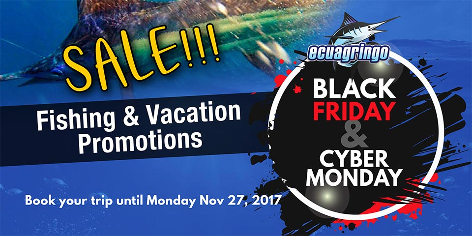 Black Friday & Cyber Monday Promotions Happening Now!