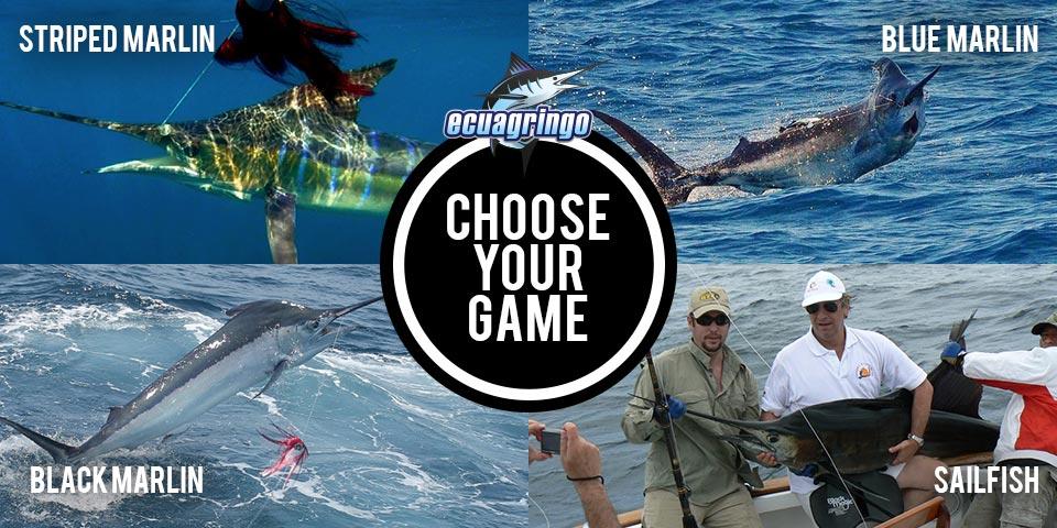 Want a destination to catch a billfish grand slam?