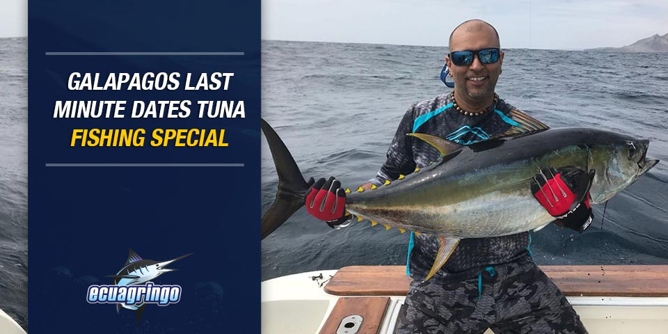 promotions 20180103 galapagos last minute dates tuna fishing special 01