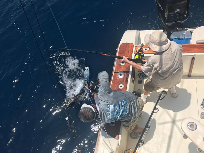 fishing reports 20180319 marlin tuna wahoo swordfish ecuador galapagos manta 04