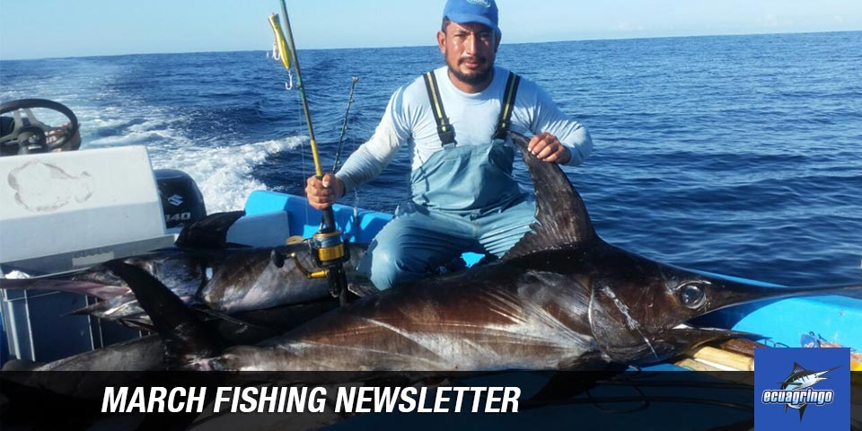 newsletters 20180325 marlin tuna march fishing newsletter 00
