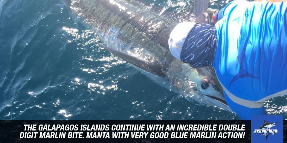 fishing reports 20180515 marlin tuna wahoo swordfish ecuador galapagos manta 01