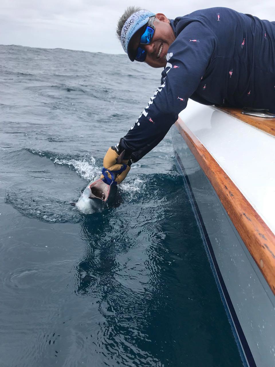 fishing reports 20180601 marlin tuna wahoo swordfish ecuador galapagos manta 03