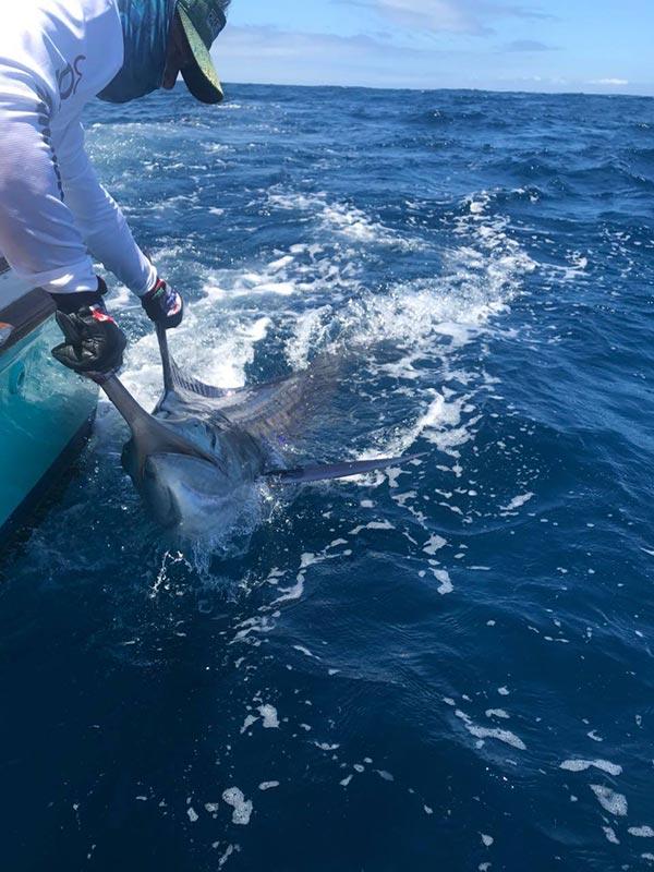 fishing reports 20180604 marlin tuna wahoo swordfish ecuador galapagos manta 04