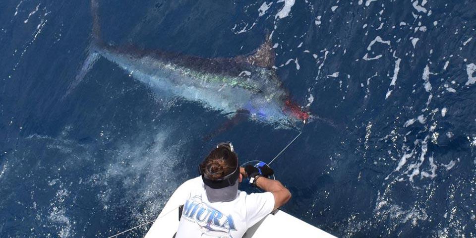 promotion 20181015 manta fishing 00