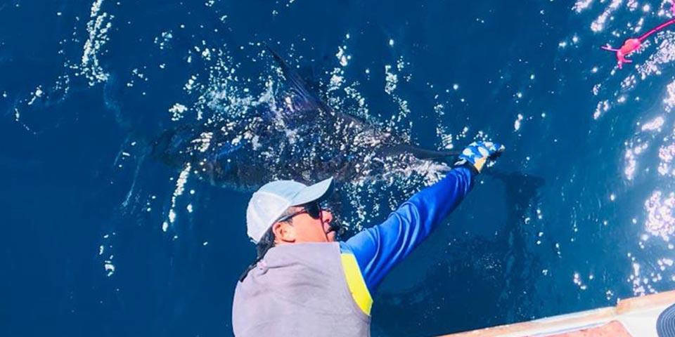 ecuagringo marlin fishing report 20190930 01