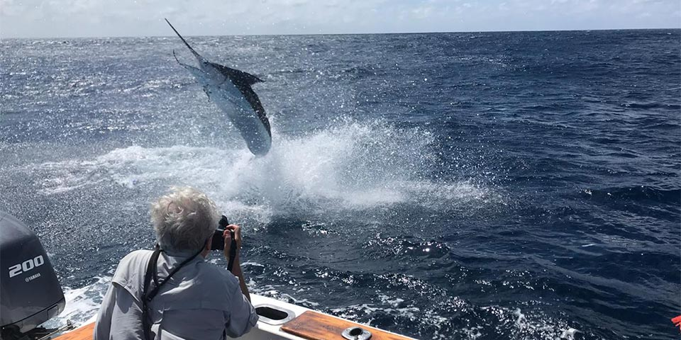 promotion marlin fishing 20191111 01