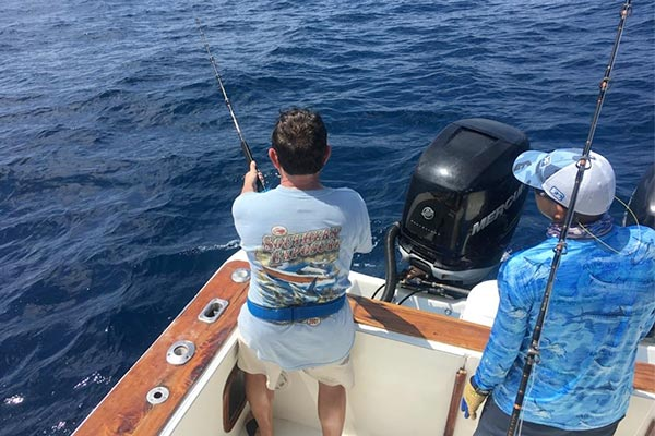 ecuagringo marlin fishing report 20200227 02