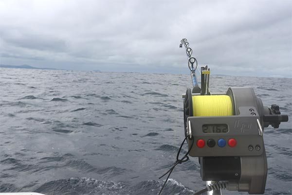 bottom fishing ecuagringo galapagos 03