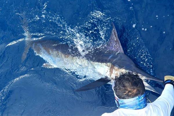 blog fishing galapagos islands 20200904 03