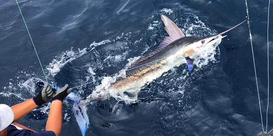 blog fishing galapagos islands 20200908 01