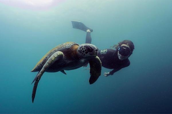 fishing reports 20201107-ecuagringo galapagos 02