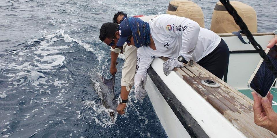 fishing reports 20201211 ecuagringo galapagos 01