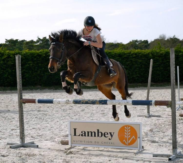 Spirit est un double poney qui nous offre une parfaite transition entre les poneys et le passage à cheval. Très doux, il saura vous mettre en confiance. Avec son superbe coup de saut, il vous donnera de belles sensations à l'obstacle pour les plus confirmés