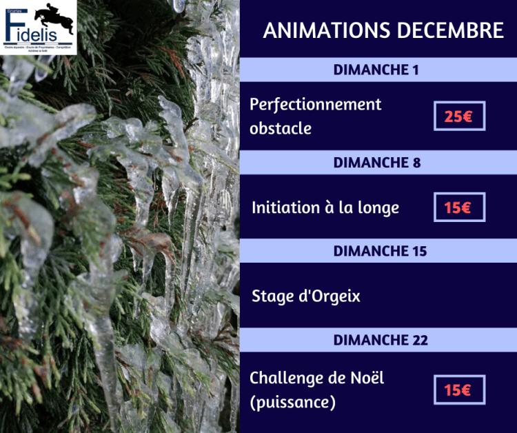 Voici le programme des animations du mois de décembre ! N'hésitez pas à vous inscrire auprès de vos moniteurs, par texto, ou par MP !  N'oubliez pas que des stages sont organisés pour les vacances scolaires à la fin du mois (exceptés le 25 décembre et le 1er janvier)