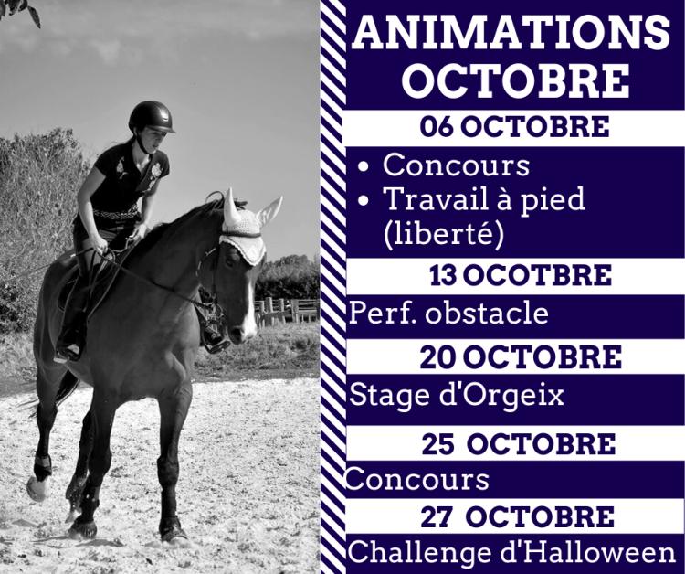 Le programme des animations d'octobre est fin prêt ! N'hésitez pas à vous inscrire auprès de vos moniteurs pour les différentes activités ! Attention les places sont limitées pour certaines activités ! Alors inscrivez vous vite !
