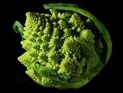 En la naturaleza también aparece la geometría fractal, como en este romanescu.