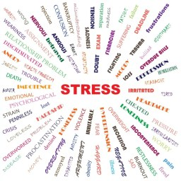 graphic on stress
