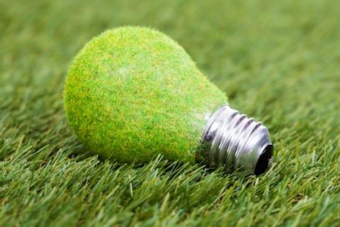 green bulb grass