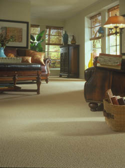 Carpet Stores in Worcester  MA   Satisfaction Guaranteed carpet flooring