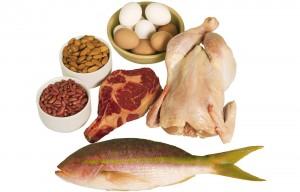 proteines