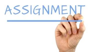 Assignment Writing Service & Help Online