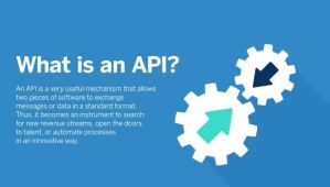 What is an API? (Application Programming Interface)