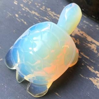 schildpadje opaline gepolijst