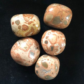 kalkooliet leopardiet trommelstenen