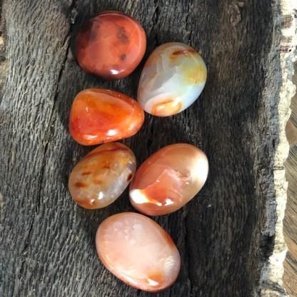 carneool handstenen klein gepolijst mineralen