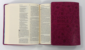NIV Pink Journalling Bible Pink Imitation Leather Free