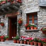 Come scegliere Vasi e Contenitori per terrazzi e balconi