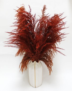Pampas Grass in Vase