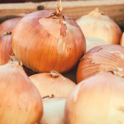 Onion (Sweet Yellow)