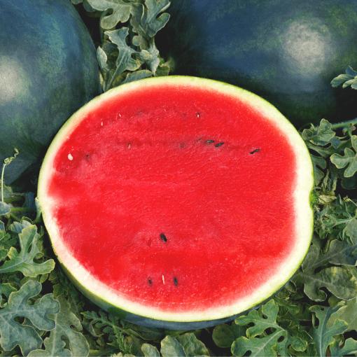 Watermelon (Sweetie Pie)