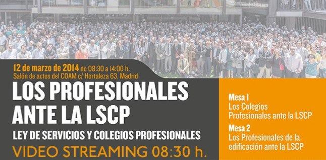los-profesionales-ante-la-lscp.jpg