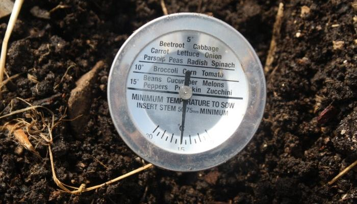 Taking your soil's temperature