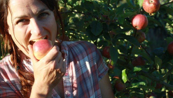 Enjoying a fresh picked apple