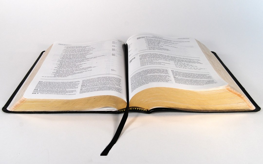 The Biblical Worldview | Part 1 of 2 by Luis Sena