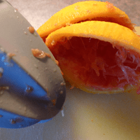 Squeezing an orange for orange syrup.