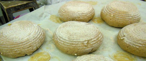 Wholemeal sourdough ready to bake