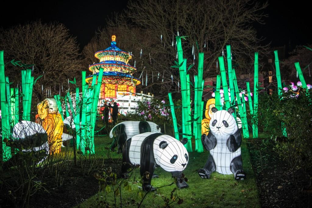 Christmas Zoo Lights